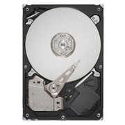 "Acer Festplatte - 250 GB - intern - 3.5"" (8.9 cm)"