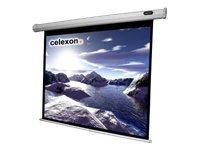 celexon Economy Manual Screen - Leinwand - Deckenmontage möglich, geeignet für Wandmontage - 250 cm (98 Zoll)