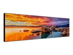 "DynaScan DI881LT2 - 223.5 cm (88"") Klasse Special LCD Solutions Series LED-Display"